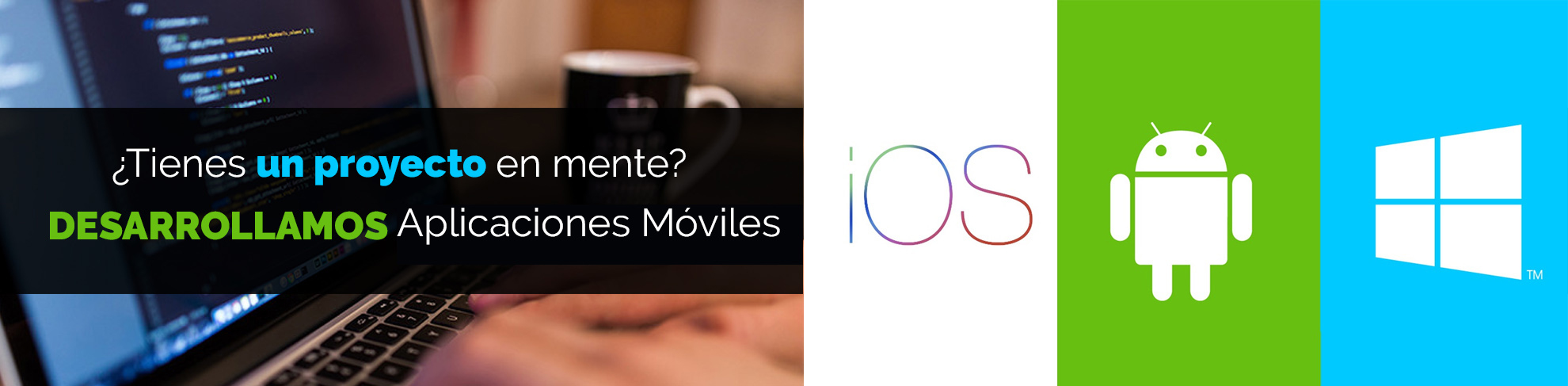 Programadores de Aplicaciones Móviles en Querétaro